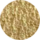 hueso 2